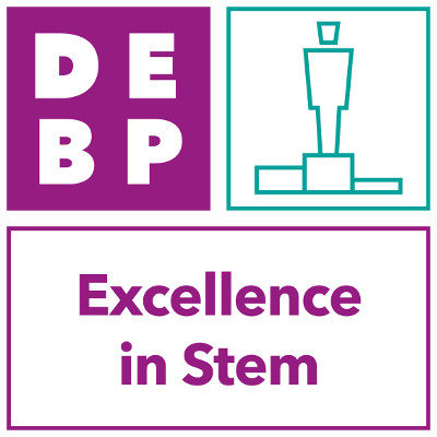 Secondary - Excellence in STEM