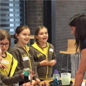 STEM Ambassador Hub - Brownies